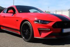Mustang-Streifen